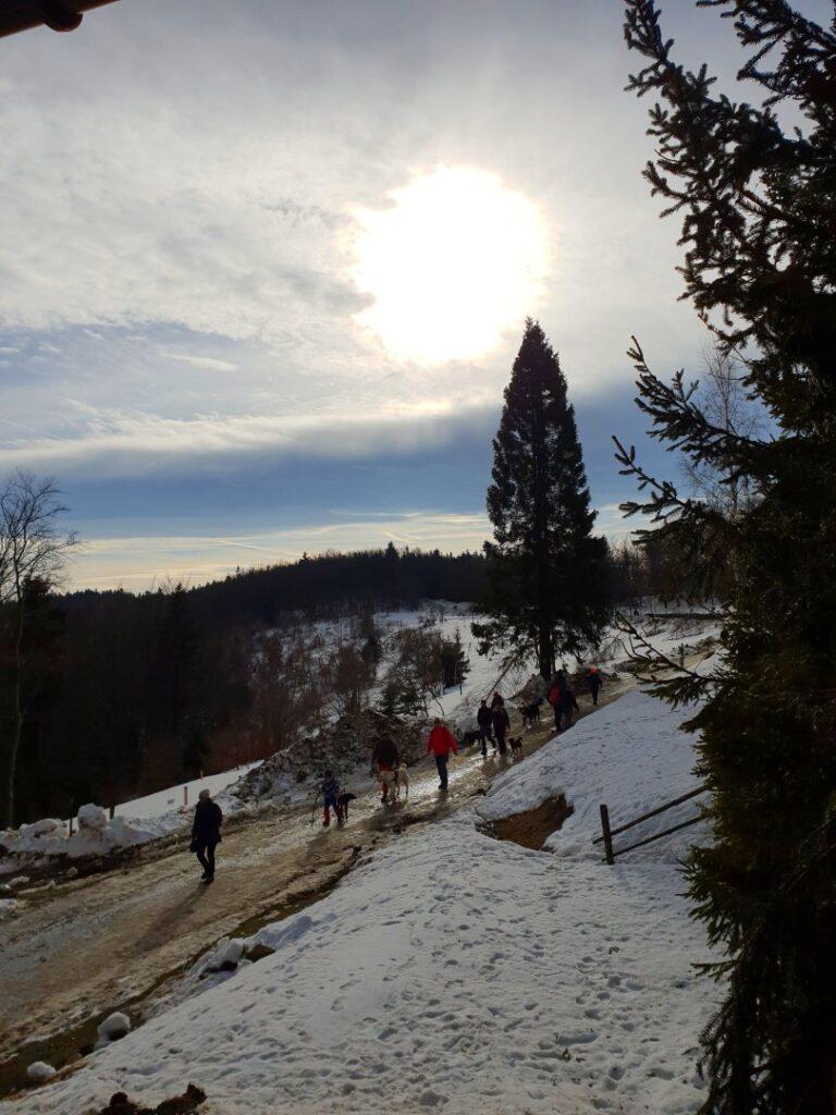 Leskowiec – szczyt zdobywany kilka razy w roku